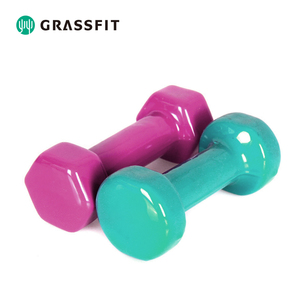 Gym Home Equipment Vinyl Dumbbells for Core Exercise