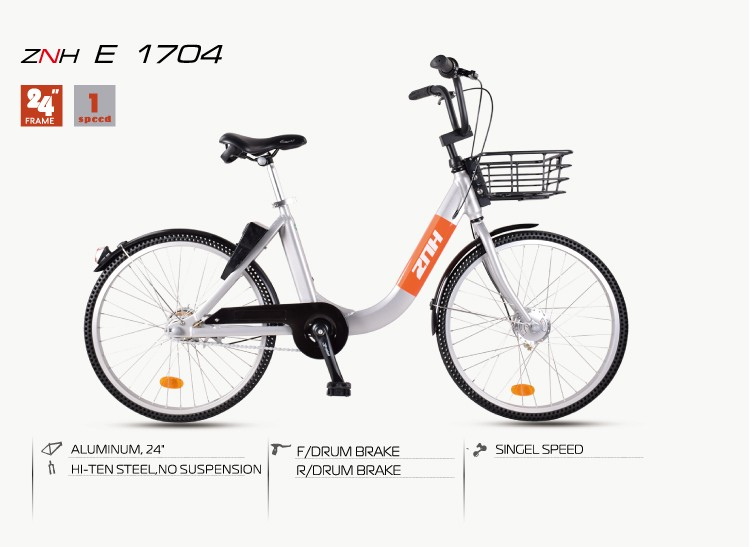 ZNH-E-1704 Saneagle electric bike