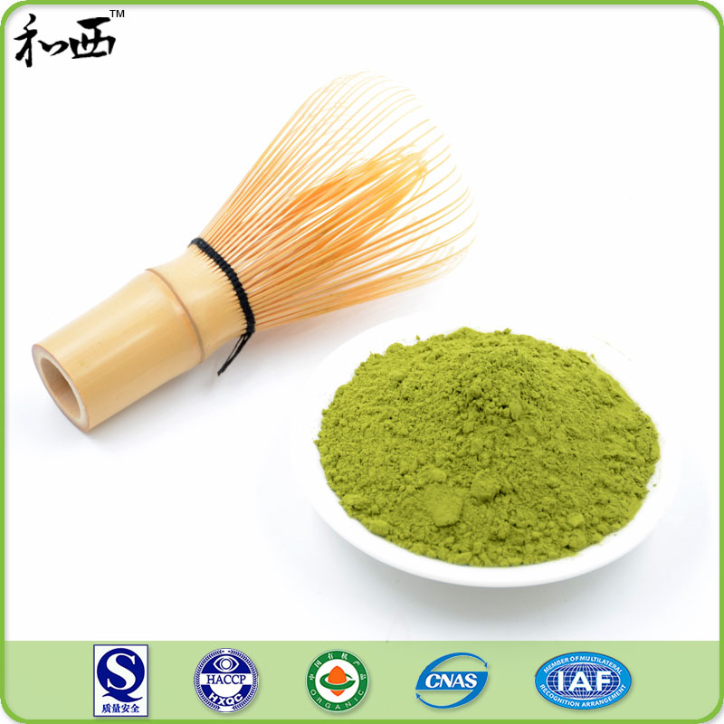 Nop Organic Certification Herbs Extract Top Quality Matcha Green Tea Extract