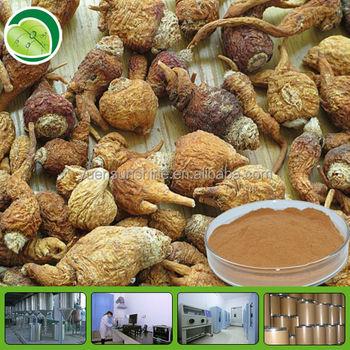 GMP factory supply organic maca extract powder