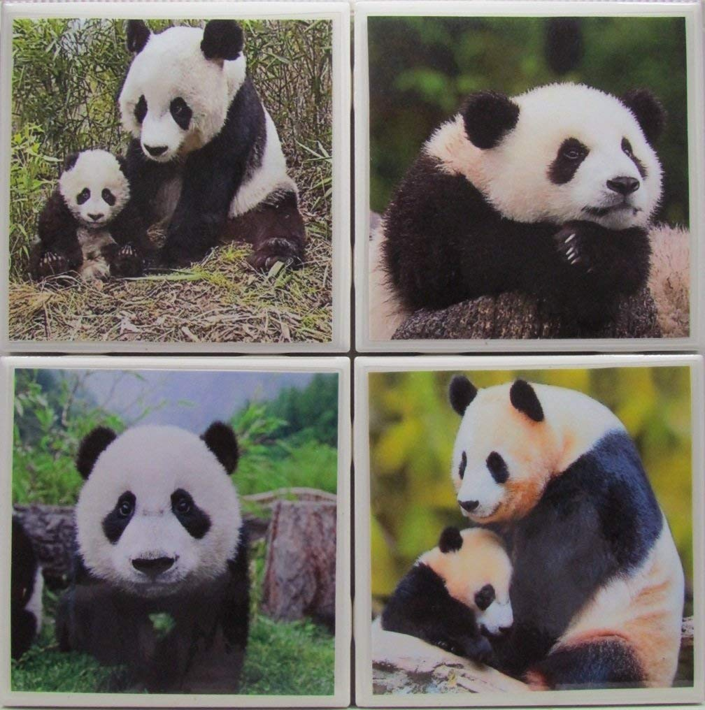 "Personalized Coasters - Panda Bears - Set of 4-4"" x 4"" - Tile Coasters - Monogram Coasters - Drink Coasters - Marble Coasters - Ceramic Coasters - Stone Coasters - Bar Coasters - Table Coasters"