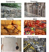 Low carbon galvanized welded wire mesh fence/widely used in farming building