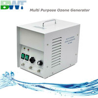 3000 mg/h hotel and laundry water and air portable ozone generator