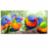 Parrot Painting Canvas Prints Wall Art Decor /Scarlet Macaw Pictures Print on Canvas/Wild Birds Canvas Artwork