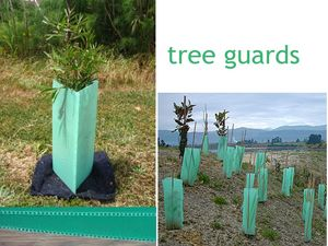 plastic square tree guard,tree guard ,sureflute rigid guards manufacturer