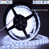 60Leds 24V IP68 Silicone TUBE Resin Waterproof SMD5050 Flexible LED Light Strip