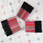 Luxury Red Organic Long Lasting Cosmetic Private Label Liquid Matte Lipstick