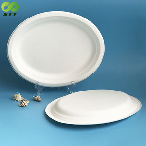 High quality sugarcane disposable oval 12.6 inch big party plate