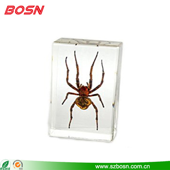 Manufactory custom clear acrylic spider paperweight for sale