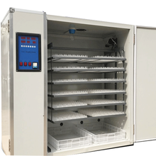Automatic chicken egg incubator 3520 pcs egg chicken egg hatching