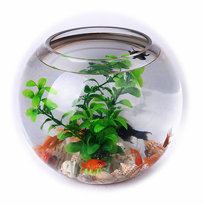 Clear Round Table Fish Tank Wholesale In 5 Sizes Buy Round Fish Tank Table Fish Tank Round Table Fish Tank Product On Alibaba Com