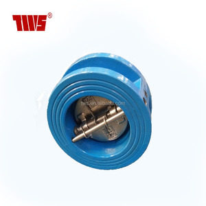 DN80 China Flapper Check Valve From TWS Valve