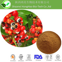 HongHao Supply Natural Paullinia Cupana Extract/Guarana Seed P.E./Best Price Guarana Dry Extract