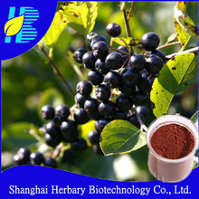 Manufacture direct supply aronia berry
