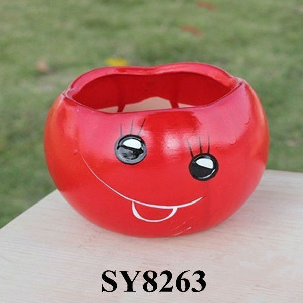 Smiling face red cartoon mini flower pot