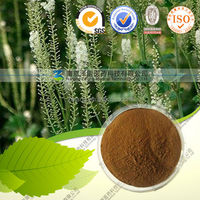 Natural Black Cohosh P.E.Cimicifugoside(Triterpenoid saponis )2.5%,8%
