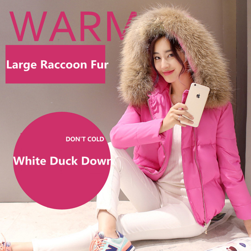 Fashion New font b Winter b font Large Real Raccoon Fur Collar Women Down Coat Short