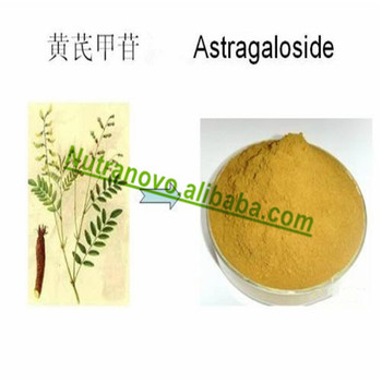 Diabetes Products and Antioxidants Astragalus Extract Astragaloside10%,5%,3%,2%,1%,0.3% For Nutraceuticals