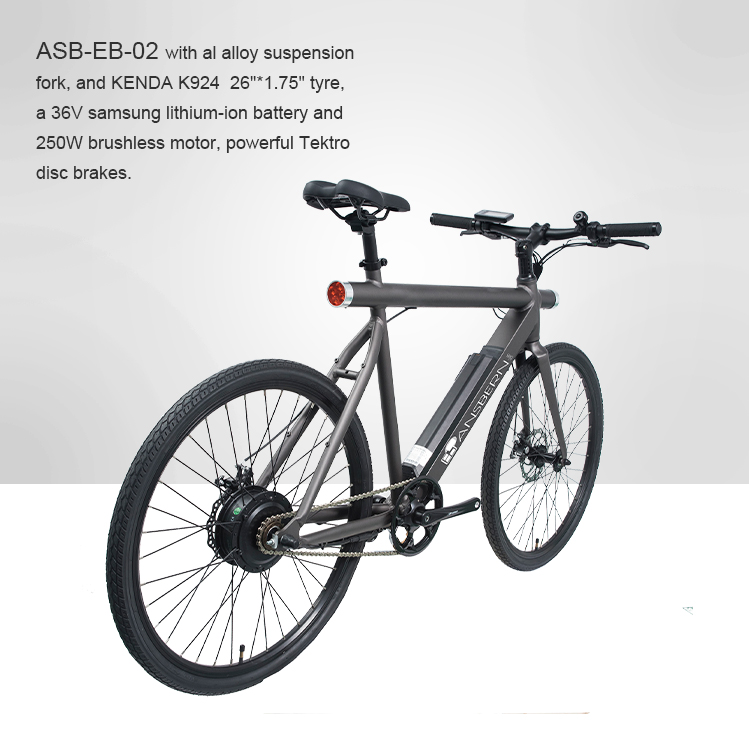 2018 CE Approved 26 Inch 250W 36V 8.8AH Rear Motor Electric City Bike
