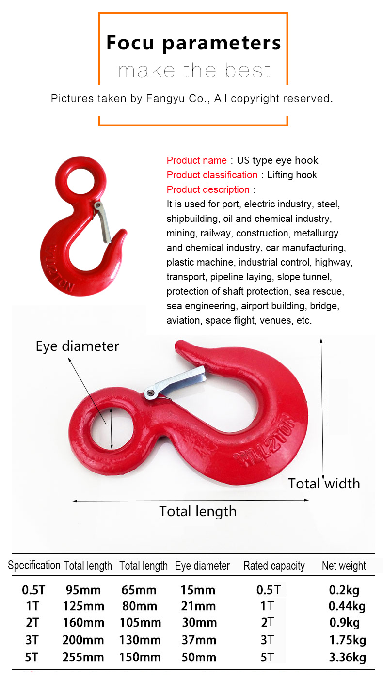 High Quality Eye slip Hook with Latch