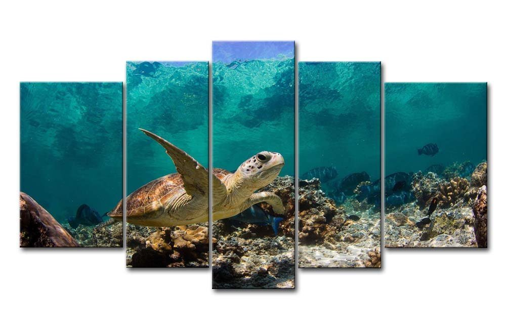 Blue 5 Panel Wall Art Painting Underwater Turtle Prints On Canvas The Picture Animal Pictures Oil For Home Modern Decoration Print Decor