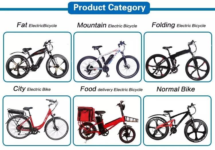 Hoch bewertetes Fahrrad der E-Bikes Fat Tire Mountain Bike Herren mit CE-Zertifikat
