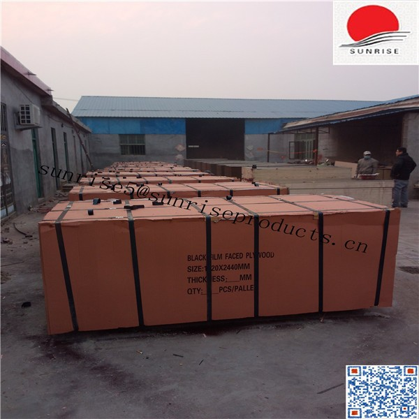 SUNPLY 18mm black shuttering plywood cheap price