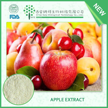 China Manufacture pure fine Apple Extract 65% Apple Polyphenols in stock with free sample