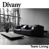 DIVANY sectional sofas direct/modern loveseat/decoro leather sofa recliner/single sofa bed D-36-1