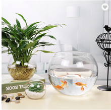 Populaire chinese <span class=keywords><strong>leverancier</strong></span> ronde vorm glas <span class=keywords><strong>aquarium</strong></span> <span class=keywords><strong>aquarium</strong></span>