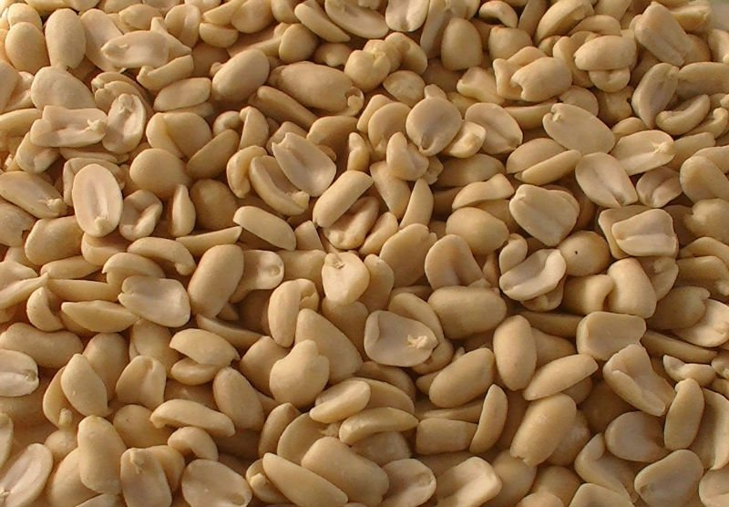 long type blanched peanuts 29/33 is the guarantee of health
