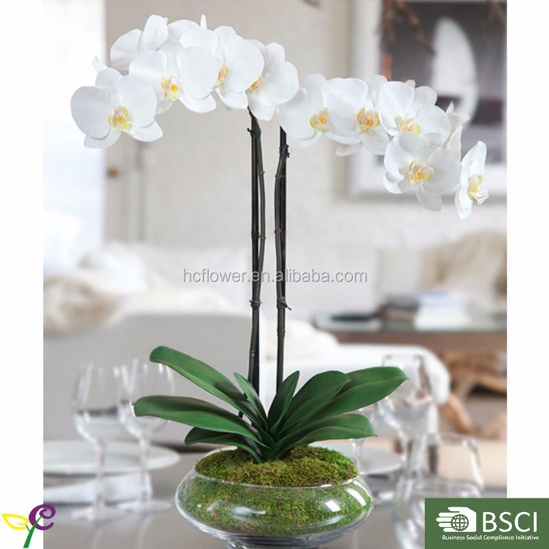 Disposizione artificiale orchidea phalaenopsis con vaso di for Vaso orchidea