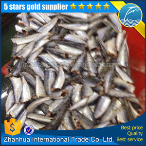 Frozen HGT sardine fish for canning, sardine whole round price