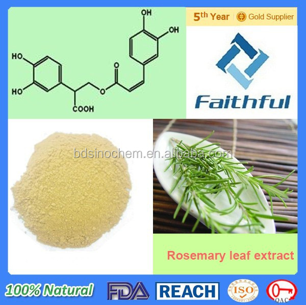 Natural Rosemary Extract Rosmarinic acid / Herb Extract / High Quality Rosemary Herb