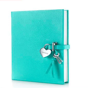 More popular kids notebook with lock