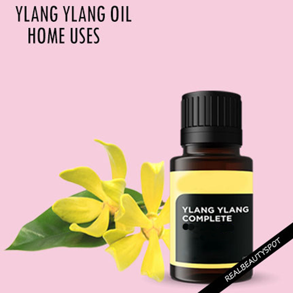 Manufacturer supply Pure Natural Organic 10ml Ylang Ylang essential oil with free sample