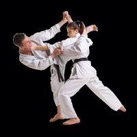 Cheap Shureido Karate Gi, find Shureido Karate Gi deals on