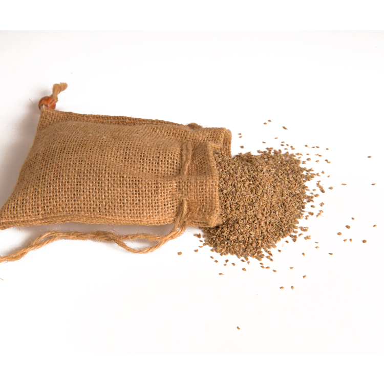 Famous Singapore Brand Spices Ajwain Seeds