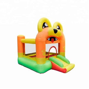 Family Inflatable Mini Bouncer For Sale