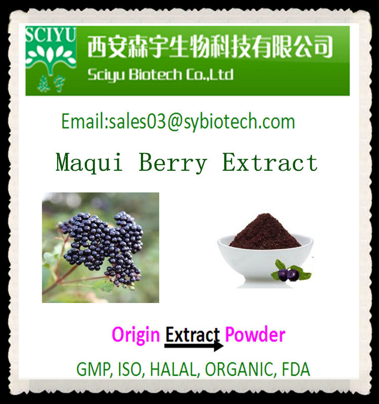Health Supplement Maqui Berry Extract Powder / Maqui Berry powder