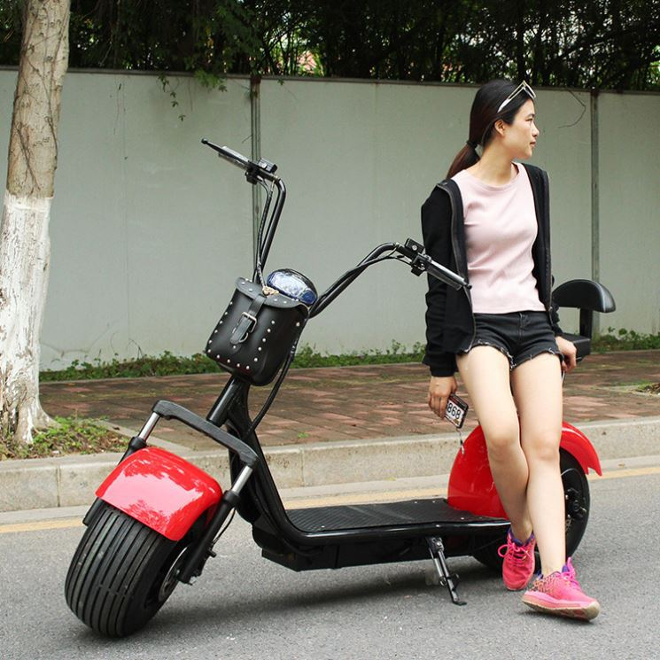 Citycoco mini style city scooter smart model fashionable scrooser 15 inch wheel
