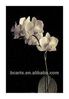 High-quality white orchid painting wall decoration painting