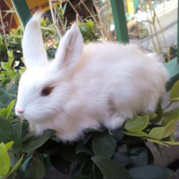 fashion furry replica realistic bunny miniature plastic animals