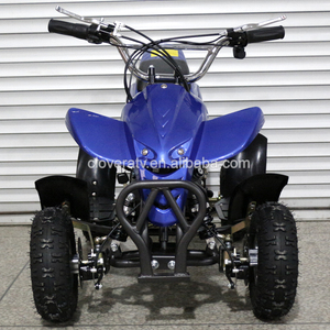 Electric Mini Motorcycle 36V 800W Used ATV Quad with CE