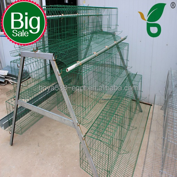 Metal wire mesh netting steel structure for chicken house layer hen coop sold abroad
