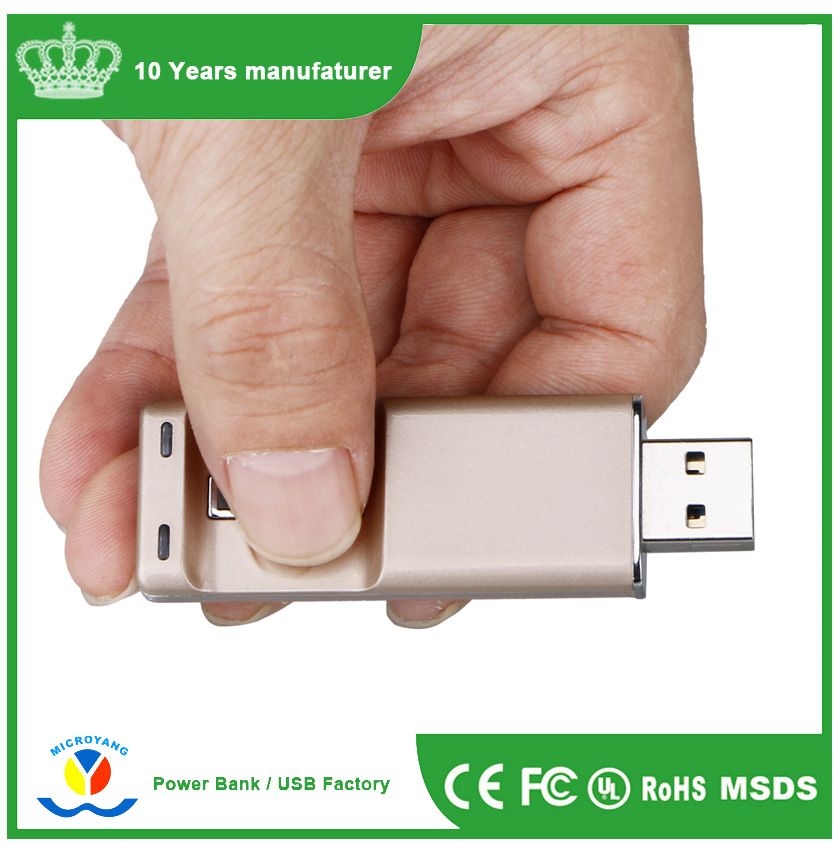 New fingerprint usb disk,full capacity OEM fingerprint hot sale cheap usb flash drive