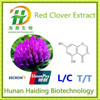China BNP Supply Natural Red Clover Extract/red clover extraction/p.e.