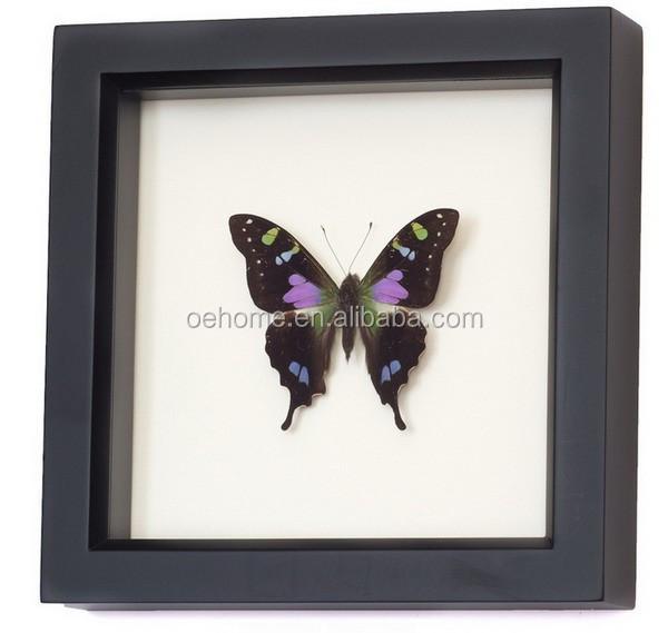Framed Butterfly Shadow Box Wall Art - Buy Framed Butterfly,3d ...