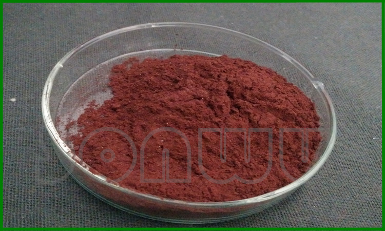 Bulk Antioxidants Raw material astaxanthin powder
