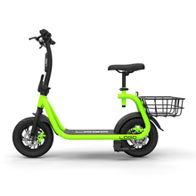 Adult 36V 350W Foldable Ebike with Hidden Battery electric bike